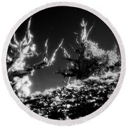 Bristlecone Twins In Infrared Round Beach Towel