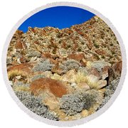 Brittlebush Leaves And Santa Rosa Mountains From Borrego Palm Canyon In Anza-borrego Desert Sp-ca Round Beach Towel