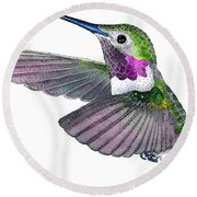 Broad-tailed Hummingbird Round Beach Towel