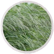 Brome Grass In The Hay Field Round Beach Towel