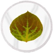 Brown And Green Aspen Leaf 4 Round Beach Towel