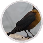 Brown Cowbird Round Beach Towel