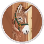Brown Donkey On Cedar Round Beach Towel