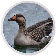 Brown Feathered Goose Round Beach Towel