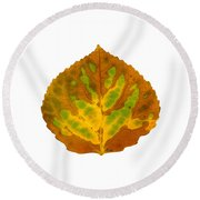 Brown Green And Yellow Aspen Leaf 3 Round Beach Towel