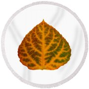 Brown Green Orange And Red Aspen Leaf 1 Round Beach Towel