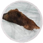 Brown Grizzly Bear Swimming  Round Beach Towel