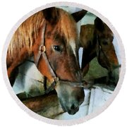 Brown Horse In Stall Round Beach Towel