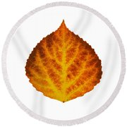 Brown Orange And Yellow Aspen Leaf 1 Round Beach Towel