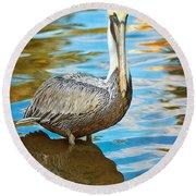 Brown Pelican Along The Bayou Round Beach Towel