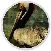 Brown Pelican Beauty Round Beach Towel