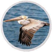 Brown Pelican Flying Round Beach Towel