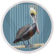 Brown Pelican II Round Beach Towel