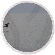 Brown Pelican In Flight Round Beach Towel