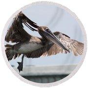 Brown Pelican Landing Round Beach Towel