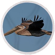 Brown Pelican Pelecanus Occidentals  Photo By Pat Hathaway 2007 Round Beach Towel