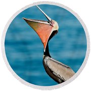 Brown Pelican Showing Pouch Round Beach Towel