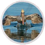 Brown Pelican Taking Off Round Beach Towel