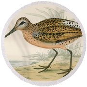 Brown Snipe Round Beach Towel