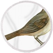 Brown Towhee Round Beach Towel by Anonymous