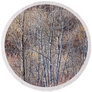 Brown Winter Forest With Bare Trees Round Beach Towel
