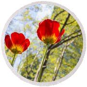 Bryant Park Tulips New York  Round Beach Towel