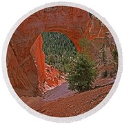 Bryce Canyon Natural Bridge And Tree Round Beach Towel
