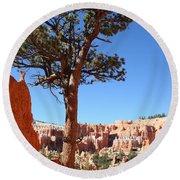 Bryce Canyon Pine Round Beach Towel