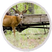 Buck Wagon Round Beach Towel