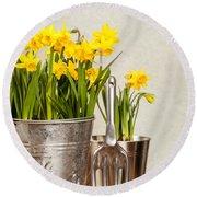 Buckets Of Daffodils Round Beach Towel by Amanda Elwell