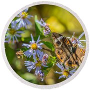 Buckeye Butterfly Round Beach Towel