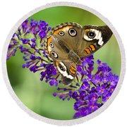 Buckeye Butterfly On Purple Flowers Round Beach Towel