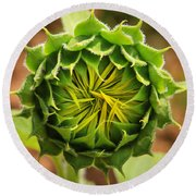 Budding Sunflower Round Beach Towel
