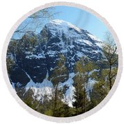 Buds And Glaciers  Round Beach Towel