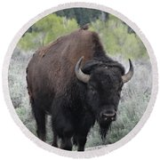 Buffalo Bird Round Beach Towel