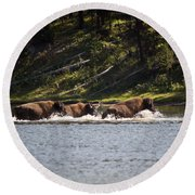 Buffalo Crossing - Yellowstone National Park - Wyoming Round Beach Towel