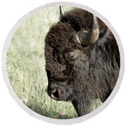 Buffalo Round Beach Towel