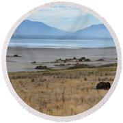 Buffalo Of Antelope Island V Round Beach Towel