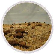 Buffalo On The Prairie Round Beach Towel