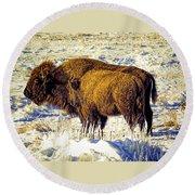 Buffalo Painting Round Beach Towel