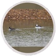 Buffleheads 3 Round Beach Towel