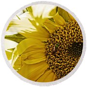 Bug In The Sunflower Round Beach Towel