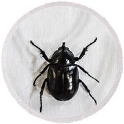 Bug Round Beach Towel