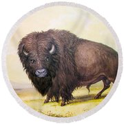 Bull Buffalo Round Beach Towel