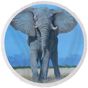 Bull Elephant Round Beach Towel