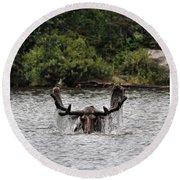 Bull Moose - 3502 Round Beach Towel