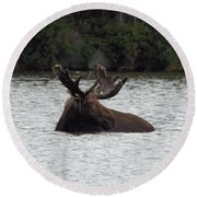 Bull Moose - 3587 Round Beach Towel