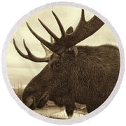 Bull Moose In Sepia Round Beach Towel