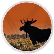 Bull Moose Sunset Round Beach Towel