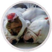 Bulldog Bliss Round Beach Towel